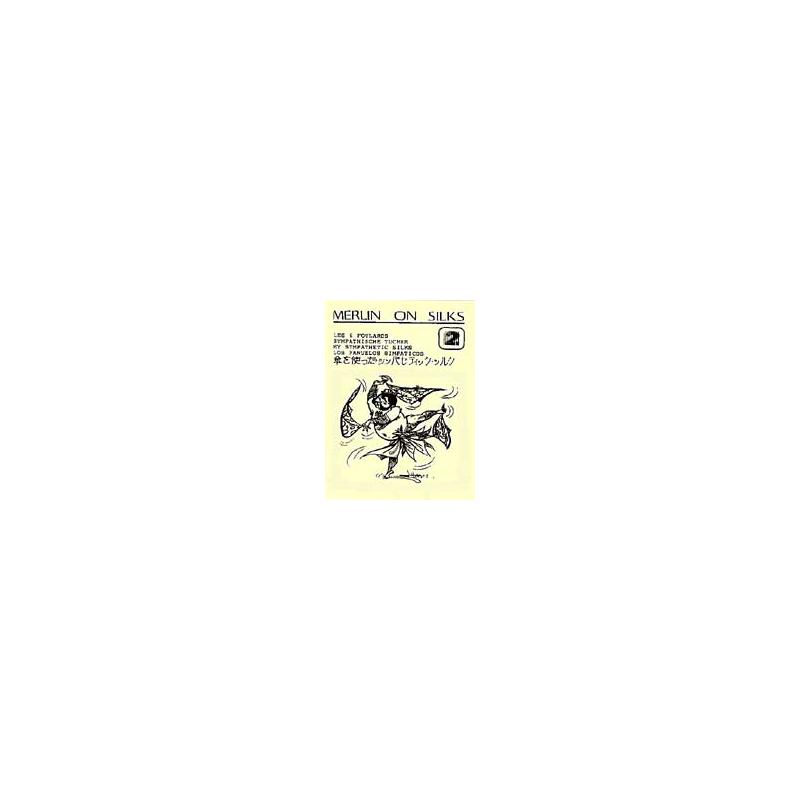 Livre Note Merlin On Silk 2