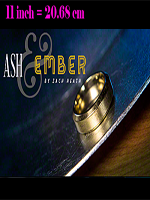 "Ash and Ember Gold Plate 20.68 cm - (2 Rings 11"") ( Zach Heath )"
