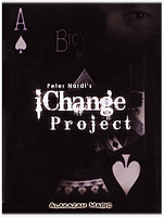 N°28 IChange Project (Peter Nardi's)