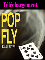 Télechargement Pop Fly by Bizau Cristian