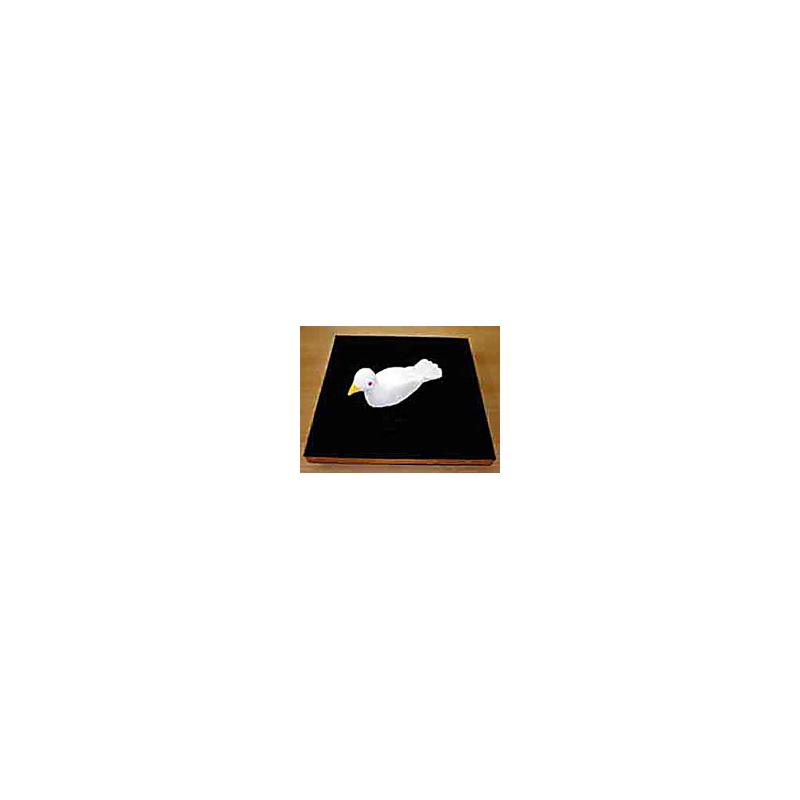 Plateau à apparition de colombe.