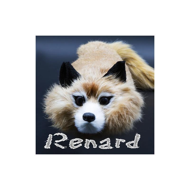 The Fox Raccoon ( le renard )