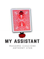 My Assistant - Anthony Stan