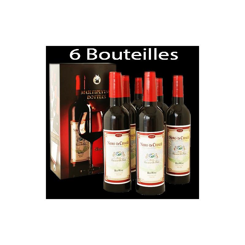 Multiplication 6 bouteilles de Vin Professionnel
