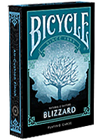 Bicycle Natural Disasters Blizzard