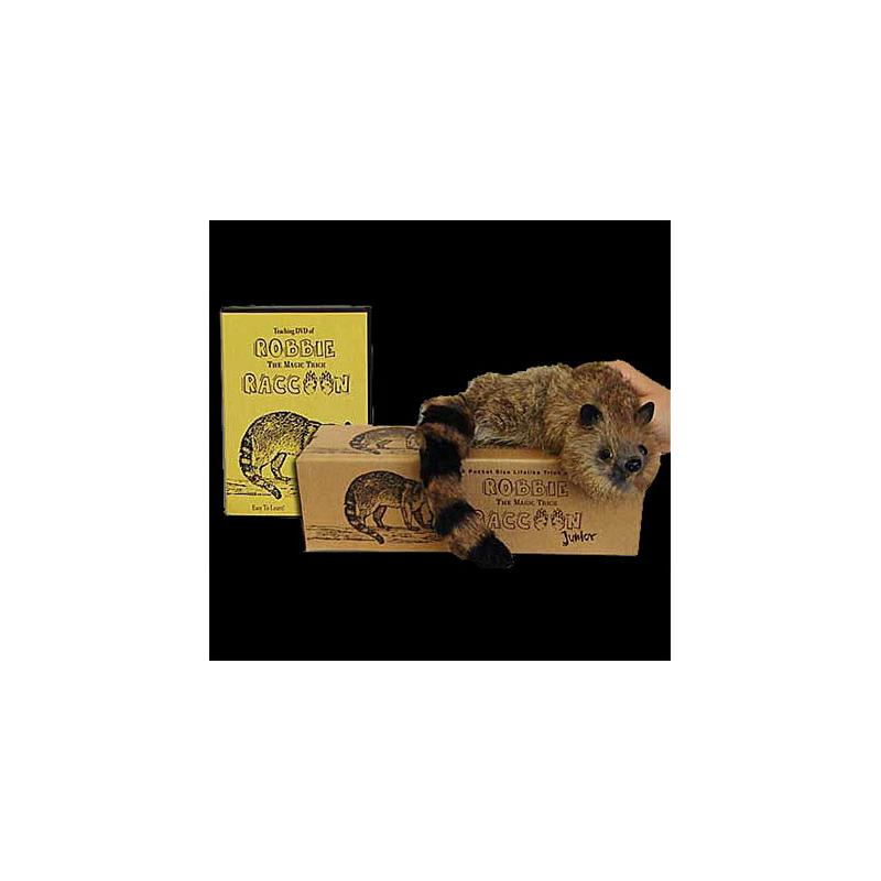 Junior Robbie Raccoon + DVD