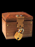 Lock Box Mini luxe - Ring Box