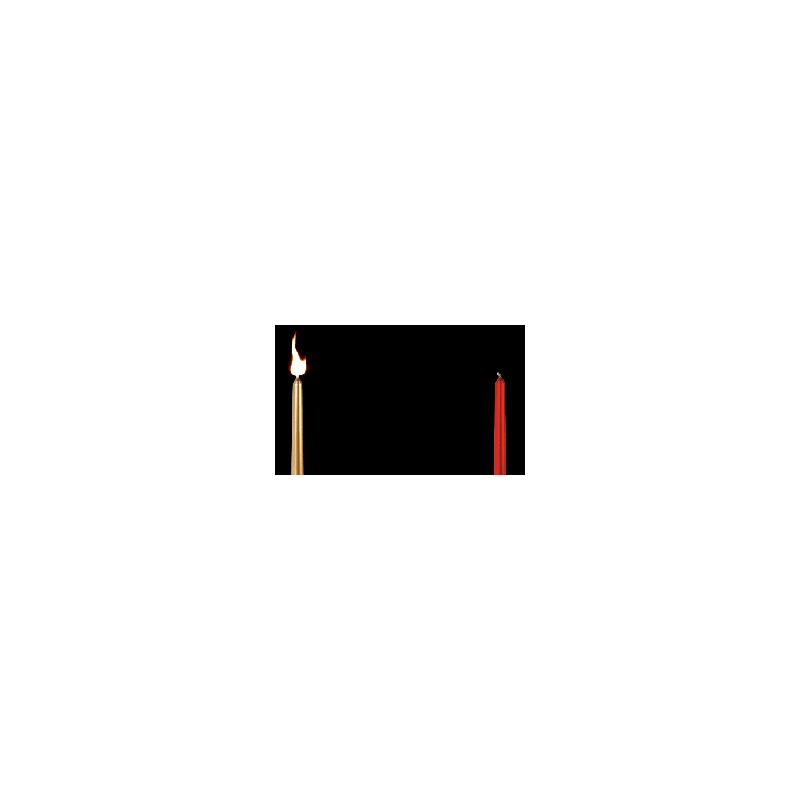 La Flamme voyageuse (Vernet)