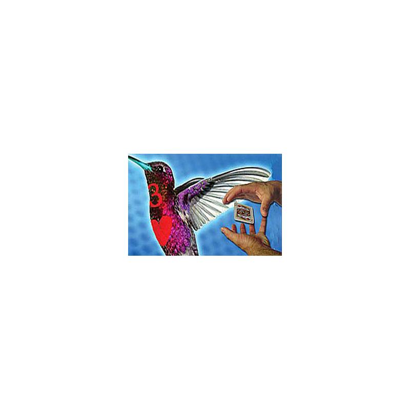Hummingbird Card DVD - la carte tourne autour du corps