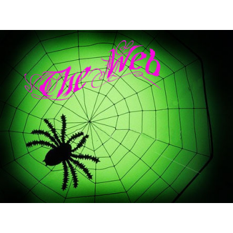 The Web eco