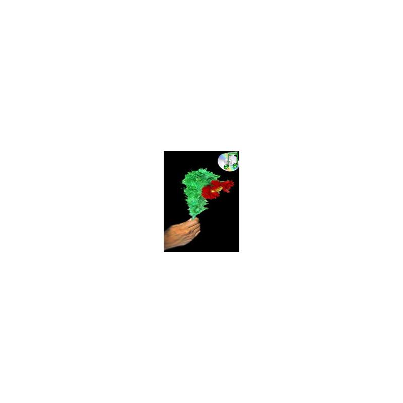 Drooping Flower - Fleur qui se penche