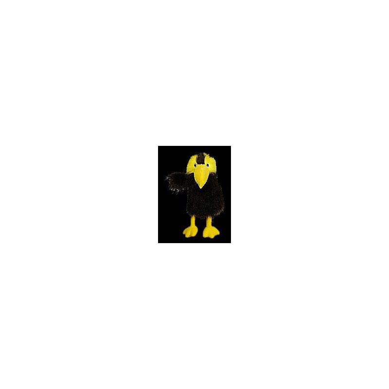 Perroquet Noir et jaune avec bruit.
