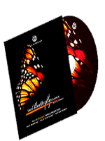 The Butterfly Effect dvd ( David Forrest )