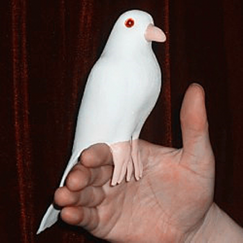 Colombe en Latex -Super Latex Dove