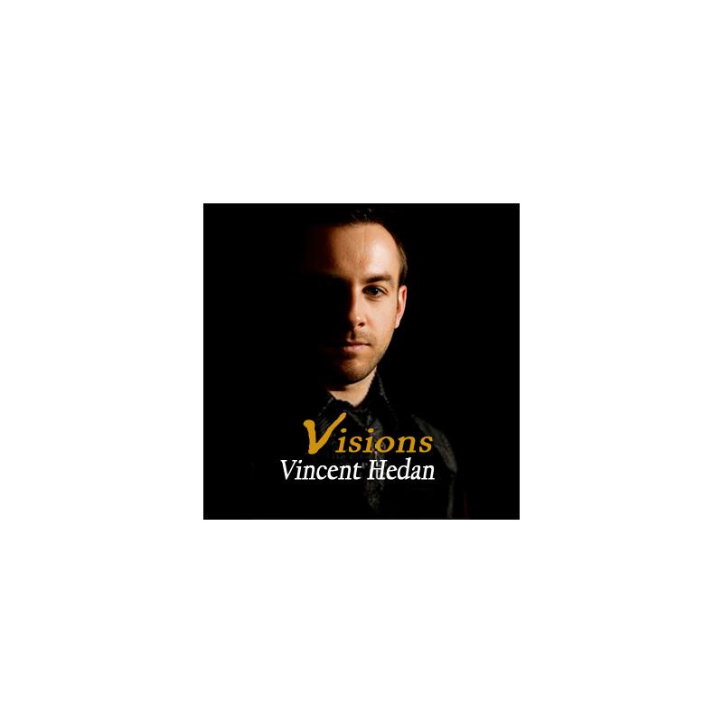 livre Vision ( Vincent Hedan )
