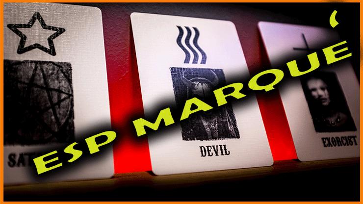 photo des cartes ESP étoile et vague du jeu Darkwave ESP - Adam Cooper.