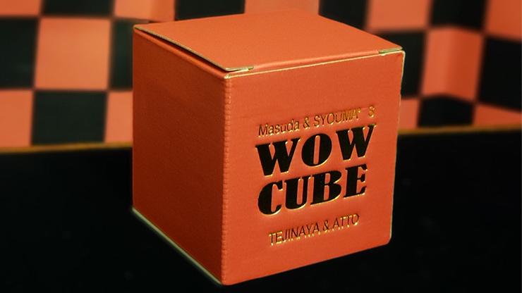voici la photo de la boite de Wow Cube Masuda